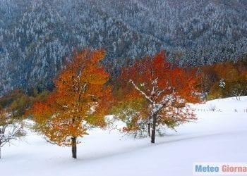 neve-autunno