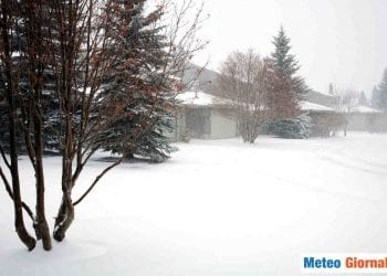 neve-novembre