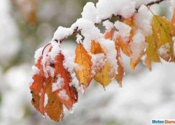 La neve si posa sui colori d'autunno