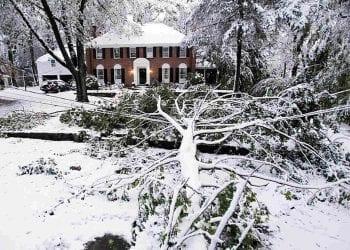 La neve nell'area di New York di fine ottobre 2011