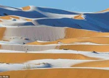 La neve sul deserto ad Ain Sefra
