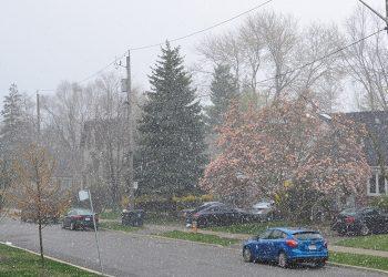Neve a Toronto il 28 maggio 2021.