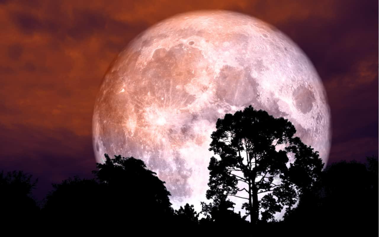 Stanotte avremo Strawberry Moon: poi niente per un anno