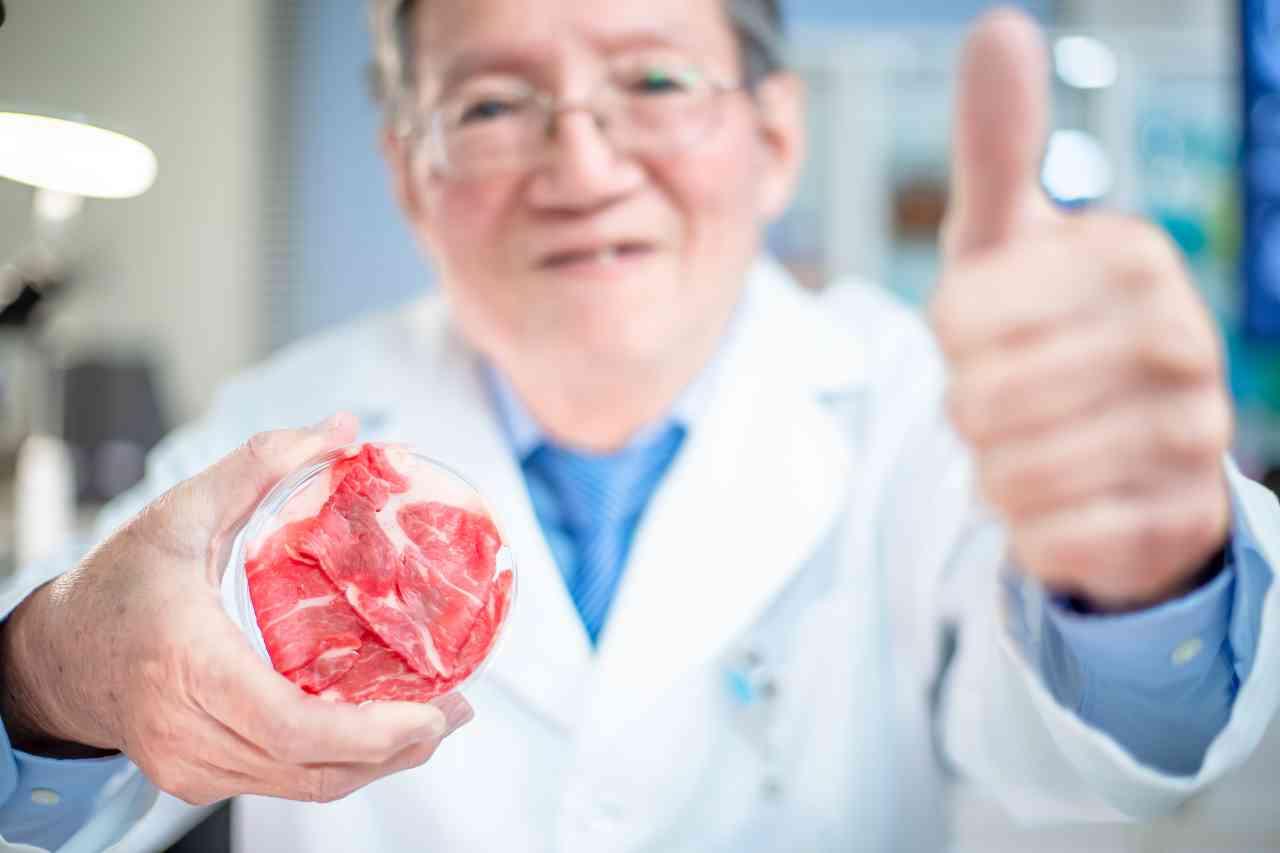 iStock 1202641464 - Carne sintetica: più dannosa degli allevamenti tradizionali