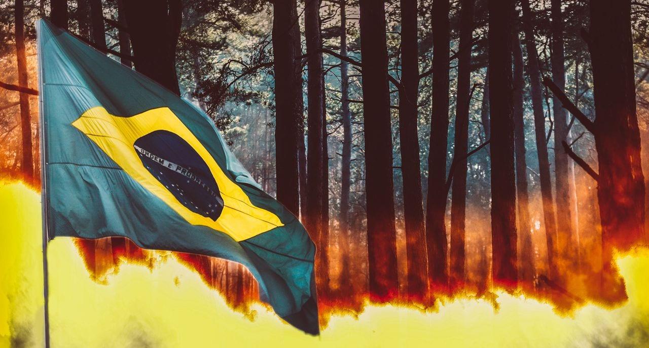 mag1 41 - Brasile: bruciamo la Foresta Amazzonica!