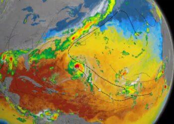 uragani galoppante aumento di in 350x250 - I mammiferi marini dell'Artico sono minacciati da un virus micidiale