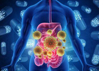 virus intestino