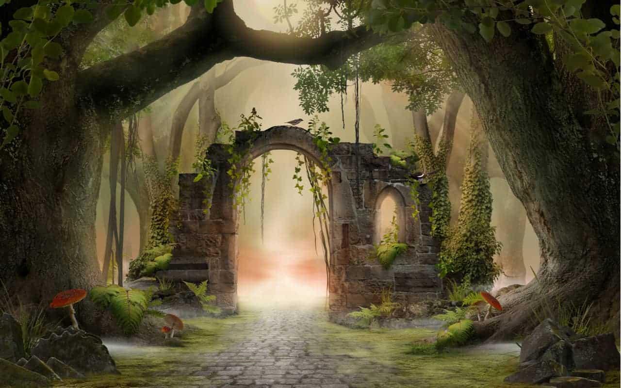 foresta fantasma 1 - Preoccupazione per il dilagare delle Foreste Fantasma